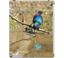 White Belly Sunbird - Beautiful Blue  iPad Case/Skin