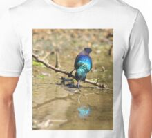 White Belly Sunbird - Beautiful Blue  Unisex T-Shirt