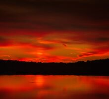Quiet Flare of Nightfall by Owed to Nature
