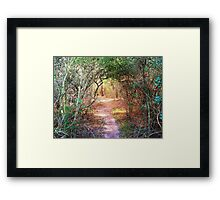 Enchanted Walkway Framed Print