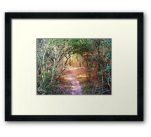 Enchanted Walkway Framed Print
