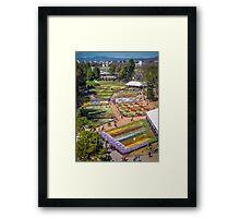Floriade 2014 - Canberra - ACT - Australia Framed Print