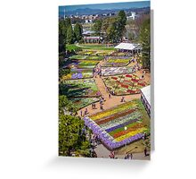 Floriade 2014 - Canberra - ACT - Australia Greeting Card