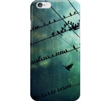 Bird City iPhone Case/Skin