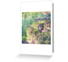 Pretty Butterfly Orange Markings Pink Flowers Green Leaves Greeting Card