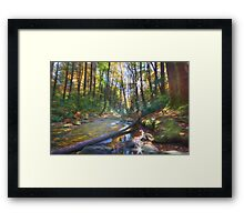 Along the Trail Framed Print