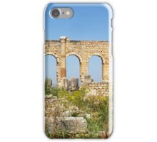 Ruins of Volubilis, Morocco iPhone Case/Skin