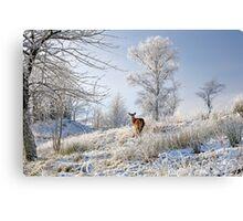 Glen Shiel Misty Winter Deer Canvas Print