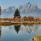 A Teton Autumn by Ann  Van Breemen