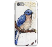 Blue Bird Collage Painting iPhone Case/Skin