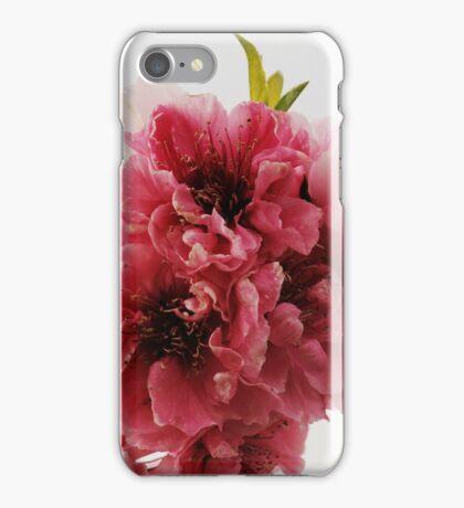 Peach Branch iPhone Case/Skin