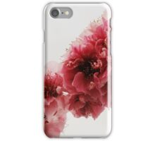 Floating Peach Branch iPhone Case/Skin