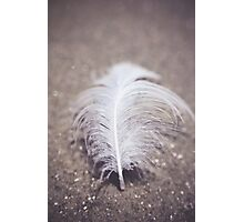 Like a Feather on the Wind Photographic Print