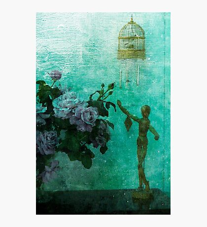 Sweet Bird of Youth Photographic Print