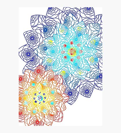 Laced Flowers Photographic Print