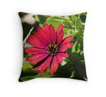 A Simple Red Flower, Spring has arrived Throw Pillow