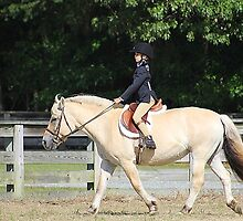 Deer Run Horse Show Club Sept. 20, 2014 (100) by DLitefulImagery