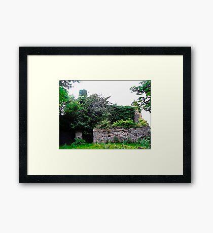 Derelict Cottage, Donegal, Republic of Ireland Framed Print