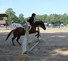 Deer Run Horse Show Club Sept. 20, 2014 (109) by DLitefulImagery