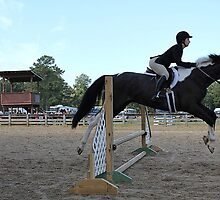 Deer Run Horse Show Club Sept. 20, 2014 (115) by DLitefulImagery