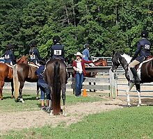 Deer Run Horse Show Club Sept. 20, 2014 (129) by DLitefulImagery