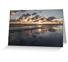 Sunset Gulls Greeting Card