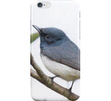 The Flycatcher iPhone Case/Skin