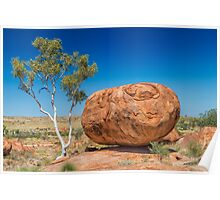 Small Tree Big Rock Poster