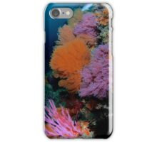 Oranges and Pinks Soft Corals iPhone Case/Skin