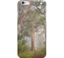 Misty Forest, Denmark iPhone Case/Skin