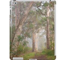 Misty Forest, Denmark iPad Case/Skin