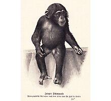 vector monkey child Photographic Print