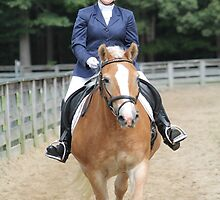 Deer Run Horse Show Club Sept. 20, 2014 (166) by DLitefulImagery