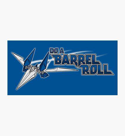 Do a Barrel Roll Photographic Print