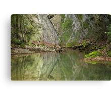 Reflections on the river Canvas Print