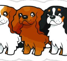Cavalier Collection - Horizontal Sticker