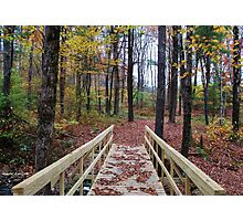 Bridge in the Autumn Forest Photographic Print