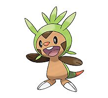 Chespin Photographic Print
