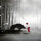 Little Red Riding Hood ~ The Poppy Flower by minoule