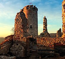 The ruins of Waxenberg castle | architectural photography by Patrick Jobst