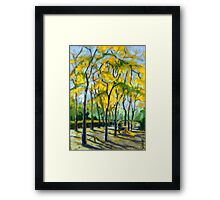 Civic Square at Burnaby Public Library. Autumn. Framed Print