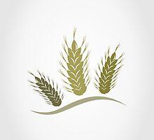 Wheat by Aleksander1