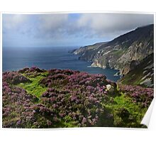 Coastal Heather Poster