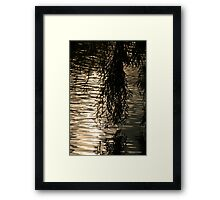 Weeping Willow Silhouette by Water Framed Print