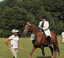 Deer Run Horse Show Club Sept. 20, 2014 (205) by DLitefulImagery