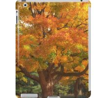 Autumn Colours 2 - MacKenzie-King Estate iPad Case/Skin