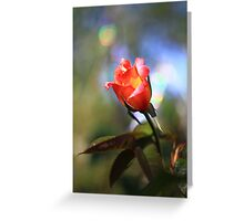 Bokeh Rose -Vintage Russian Lens Blur Greeting Card