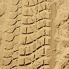 Truck Tracks on the Beach by Buckwhite