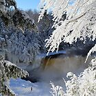 Frozen Tahquamenon Falls 2 by Debbie  Maglothin