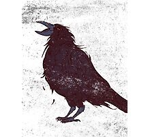 The Dark Bird Photographic Print